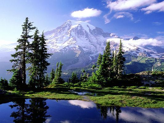 Mt. Rainier by Timothy Allen Olson